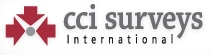 CCi Surveys International